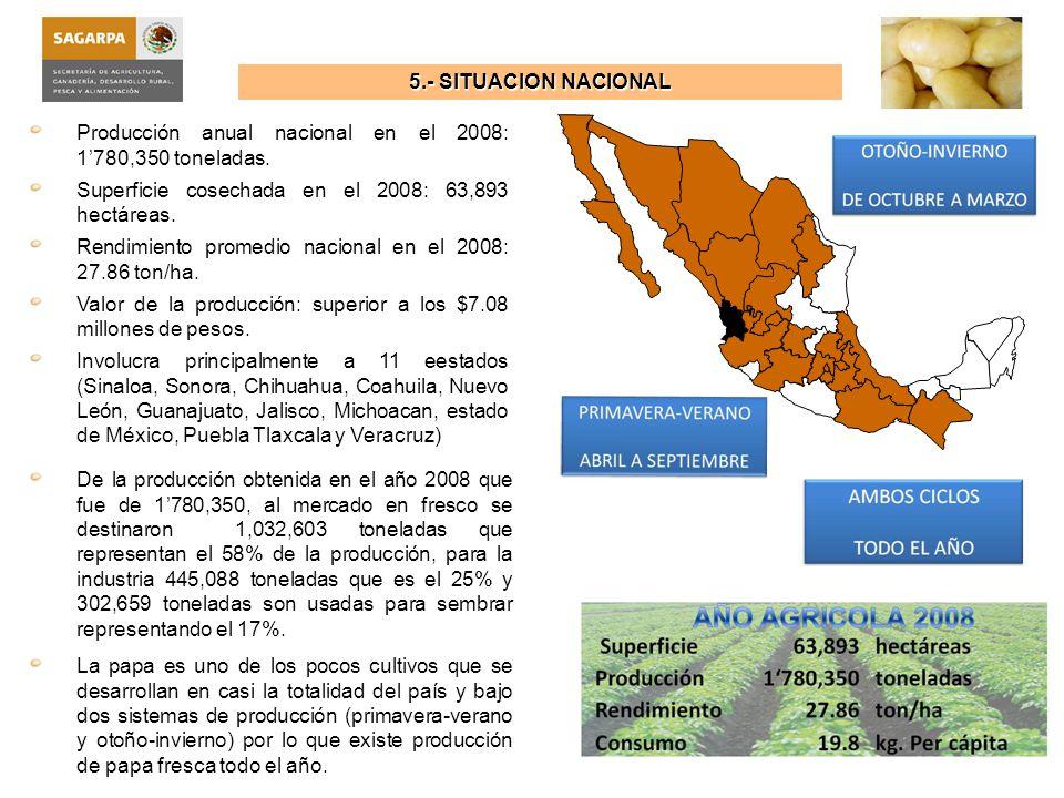 5.- SITUACION NACIONAL Producción anual nacional en el 2008: 1'780,350 toneladas. Superficie cosechada en el 2008: 63,893 hectáreas.