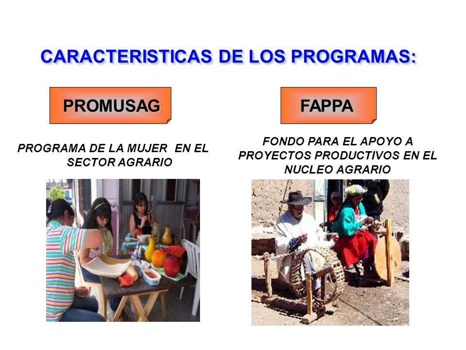 CARACTERISTICAS DE LOS PROGRAMAS: