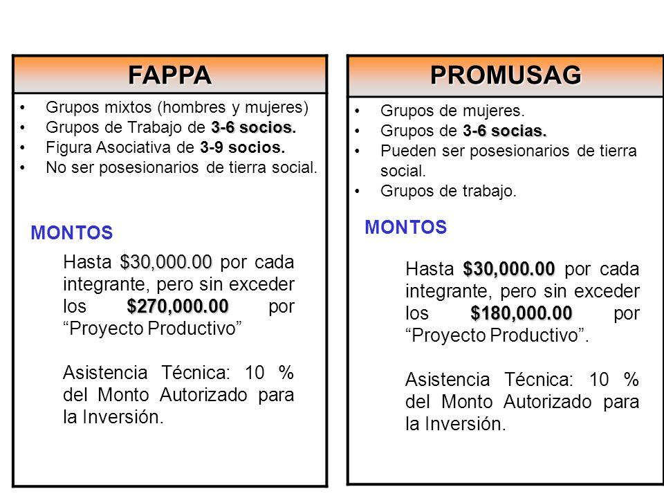 FAPPA PROMUSAG MONTOS MONTOS