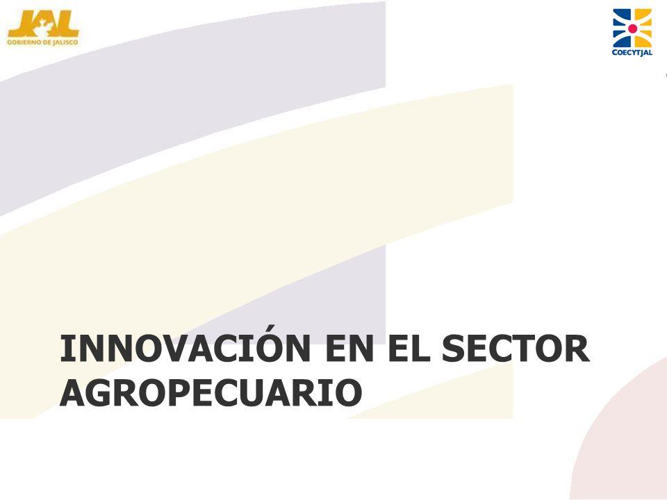 INNOVACIÓN EN EL SECTOR AGROPECUARIO