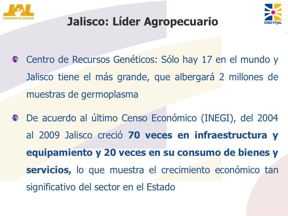 Jalisco: Líder Agropecuario