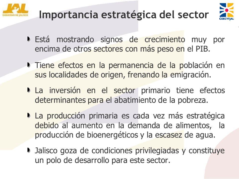 Importancia estratégica del sector