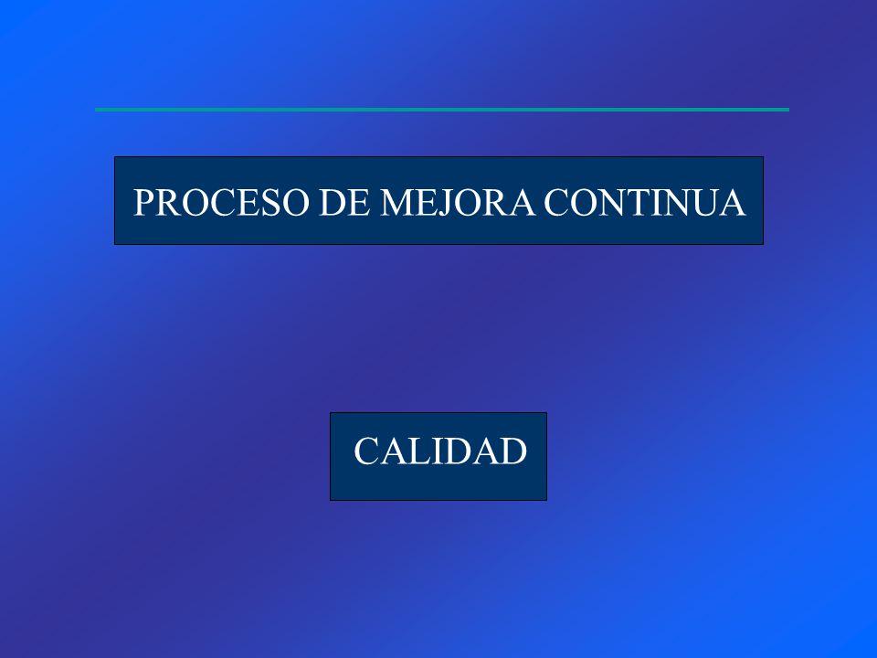 PROCESO DE MEJORA CONTINUA