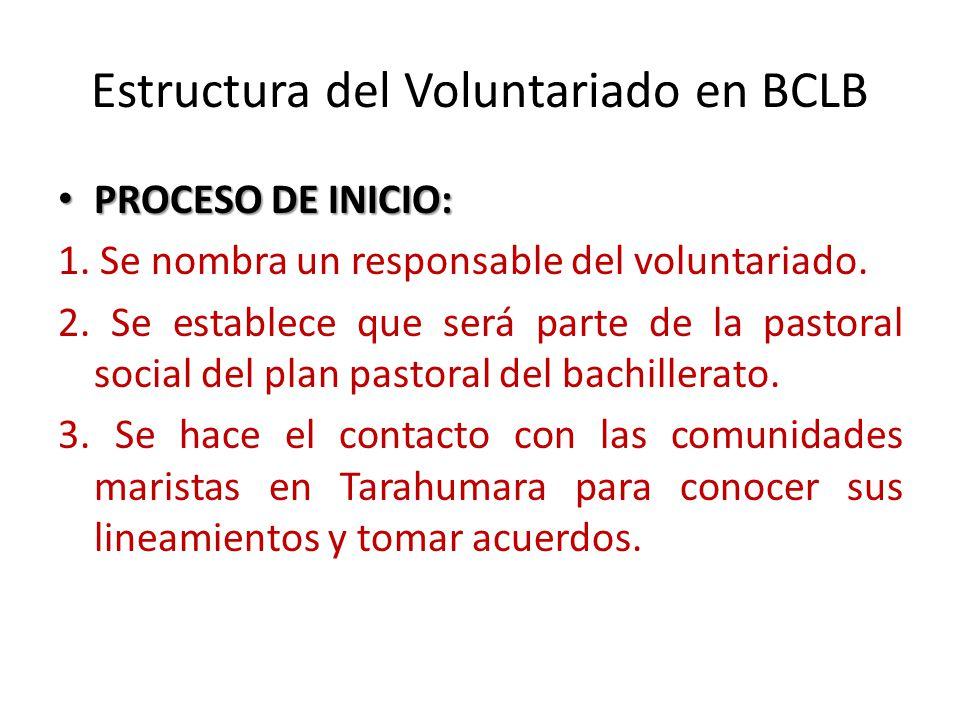 Estructura del Voluntariado en BCLB