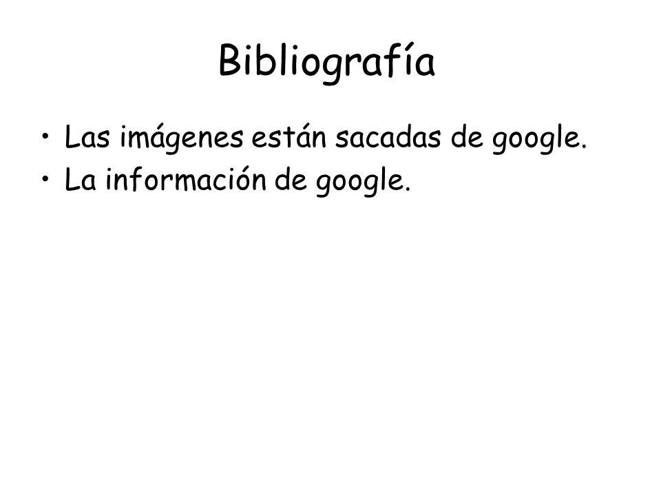 Bibliografía Las imágenes están sacadas de google.