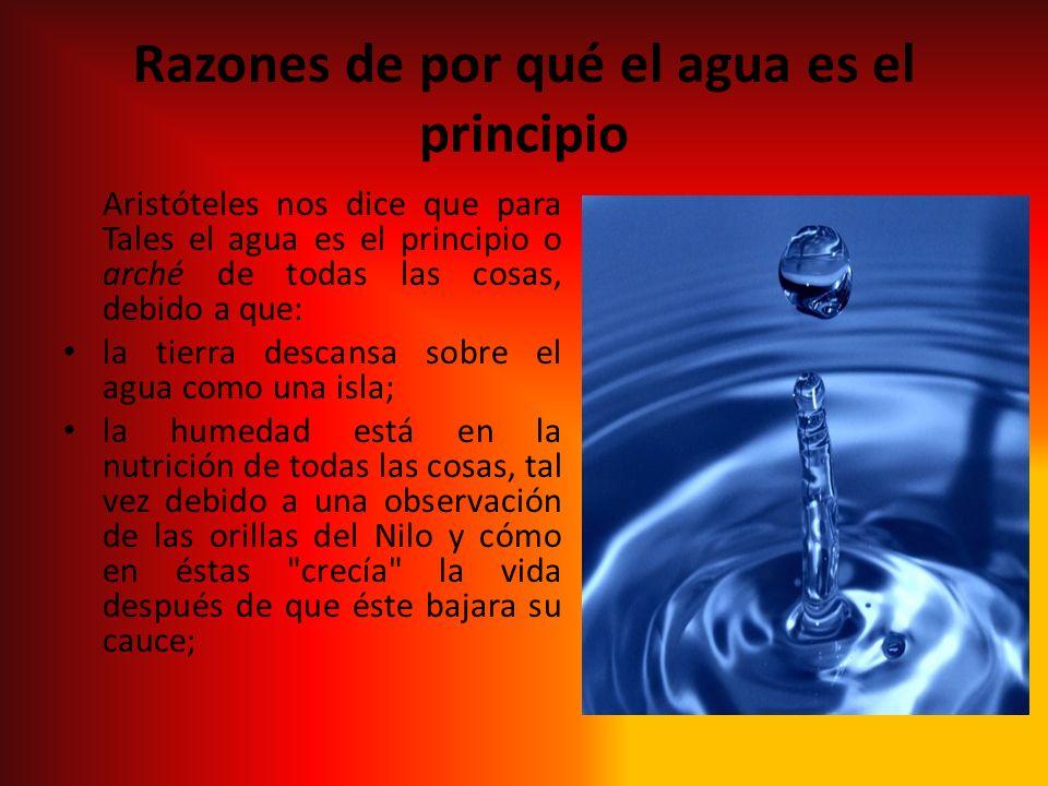 Razones de por qué el agua es el principio