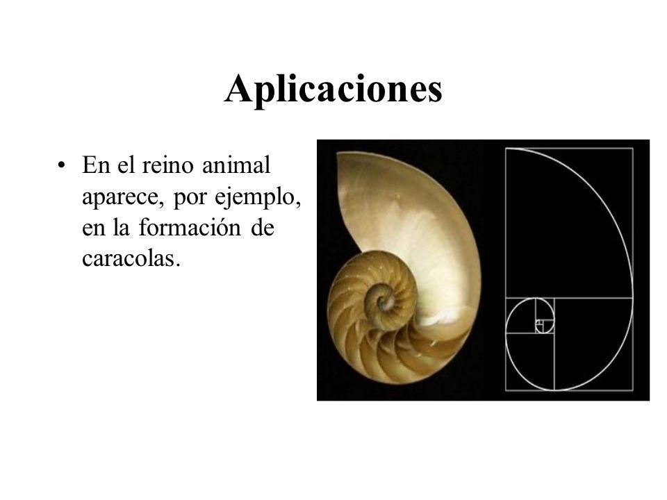 Aplicaciones En el reino animal aparece, por ejemplo, en la formación de caracolas.