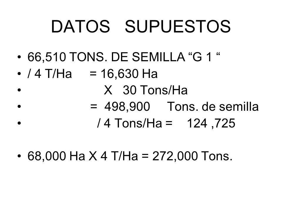 DATOS SUPUESTOS 66,510 TONS. DE SEMILLA G 1 / 4 T/Ha = 16,630 Ha