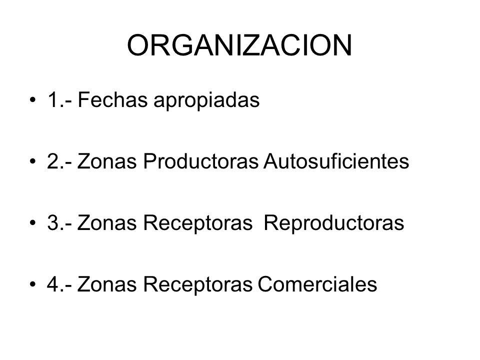 ORGANIZACION 1.- Fechas apropiadas