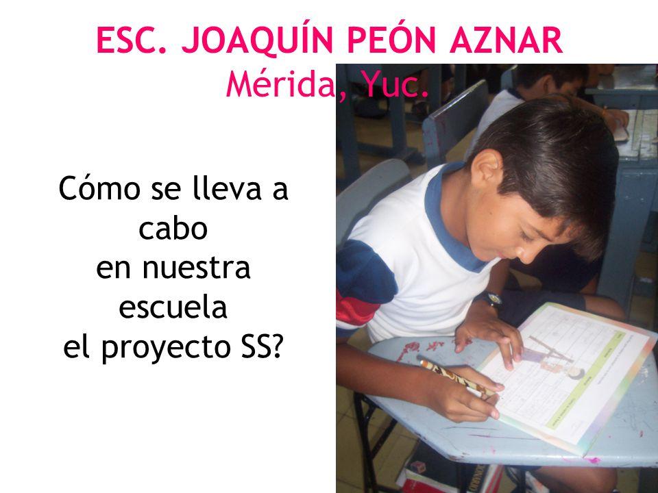 ESC. JOAQUÍN PEÓN AZNAR Mérida, Yuc.