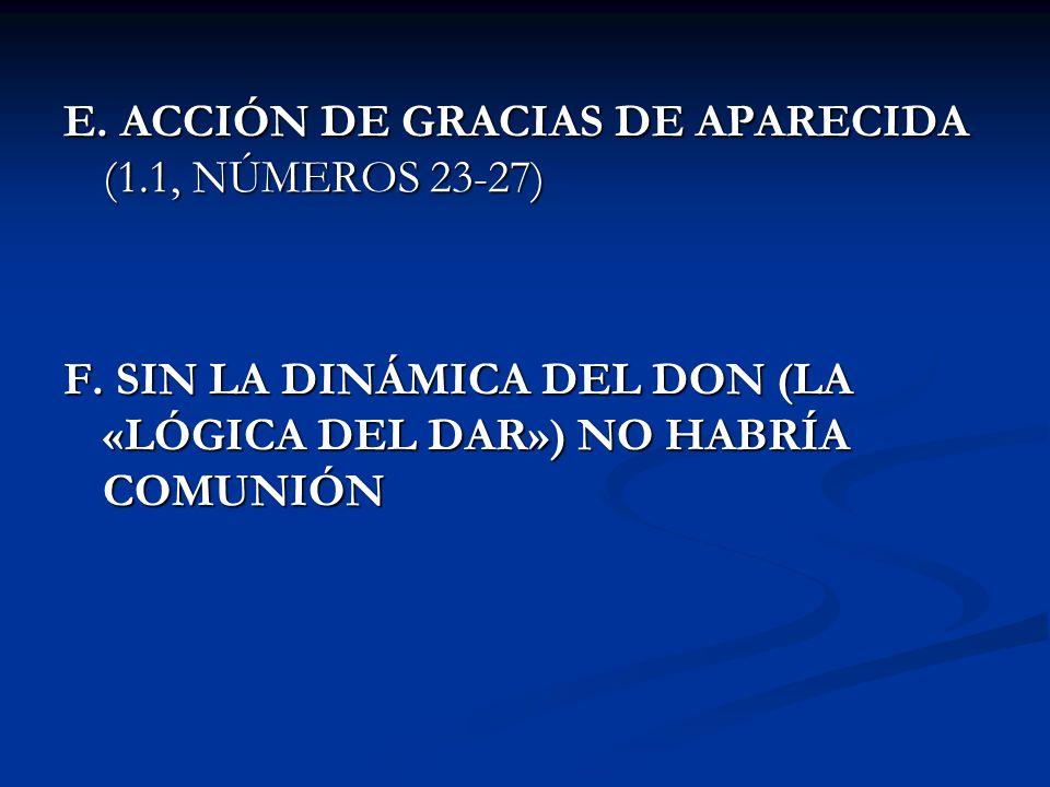 E. ACCIÓN DE GRACIAS DE APARECIDA (1.1, NÚMEROS 23-27)