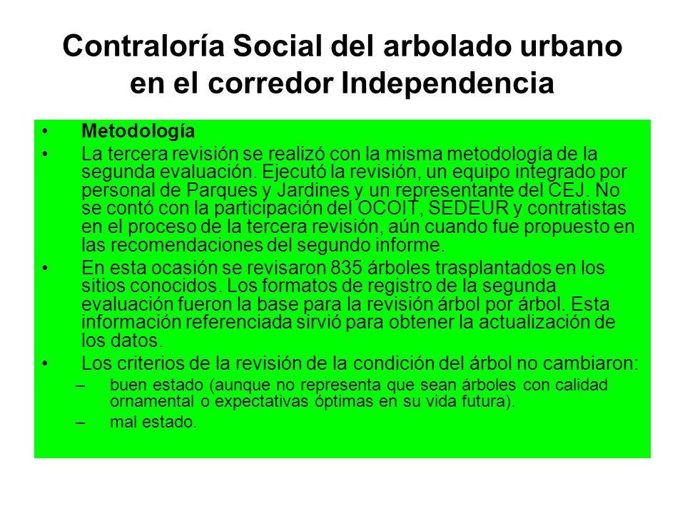 Contraloría Social del arbolado urbano en el corredor Independencia