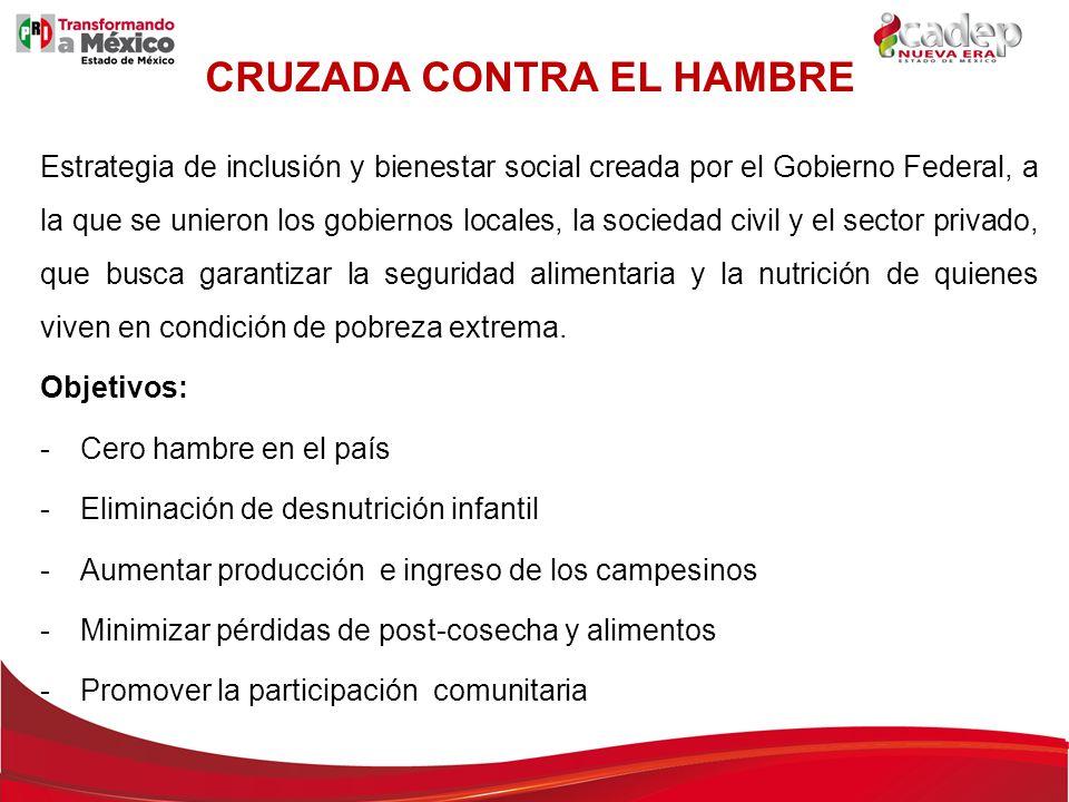 CRUZADA CONTRA EL HAMBRE