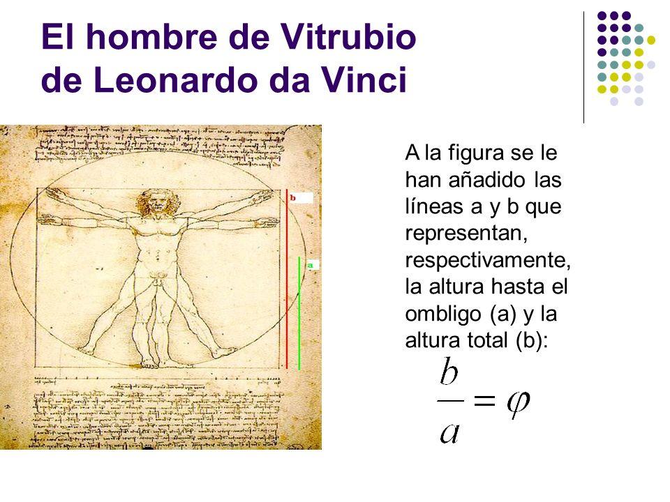 El hombre de Vitrubio de Leonardo da Vinci