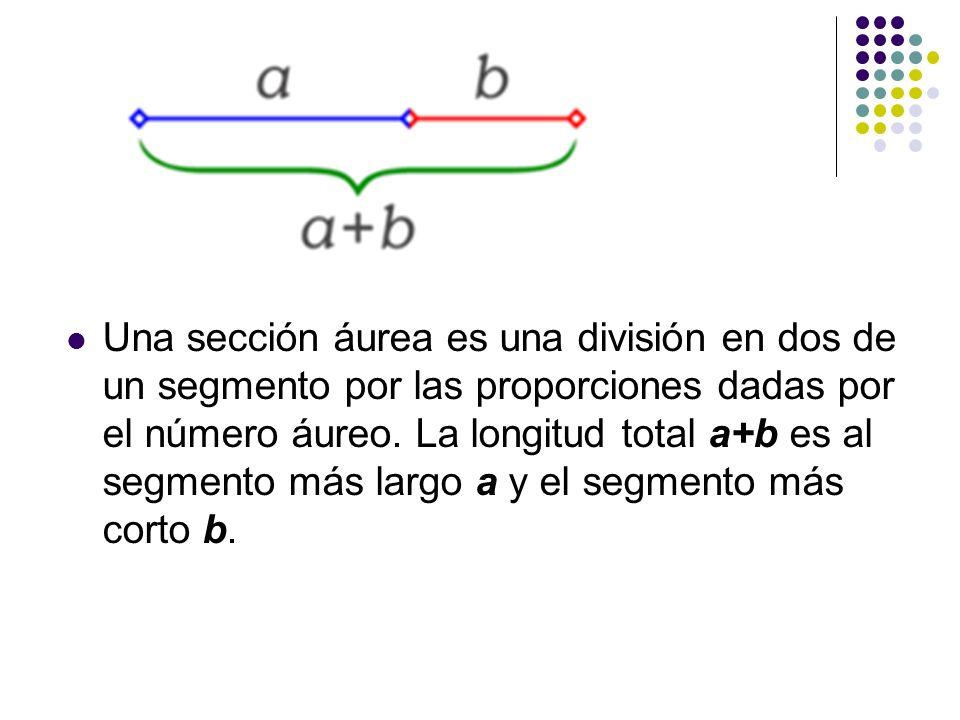 Una sección áurea es una división en dos de un segmento por las proporciones dadas por el número áureo.