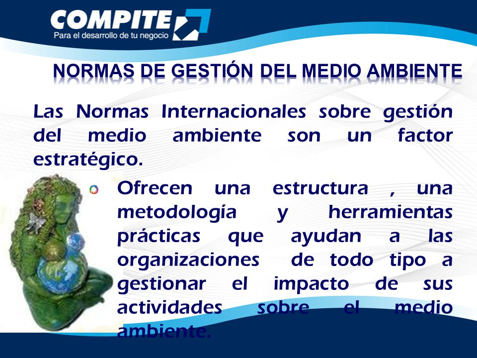 NORMAS DE GESTIÓN DEL MEDIO AMBIENTE