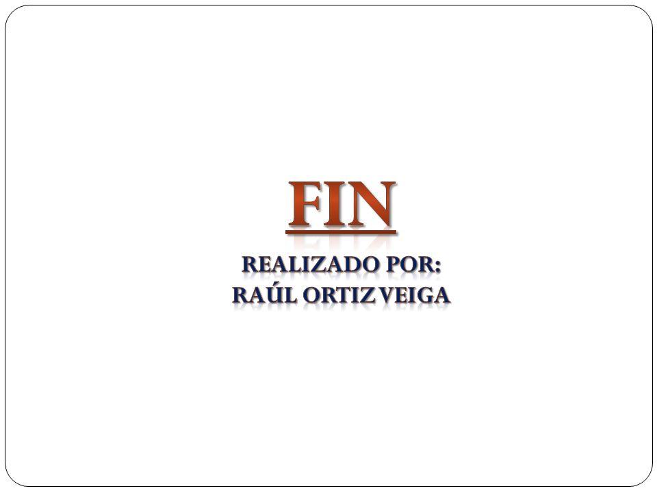 Realizado por: Raúl Ortiz Veiga