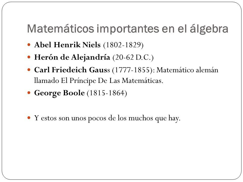 Matemáticos importantes en el álgebra
