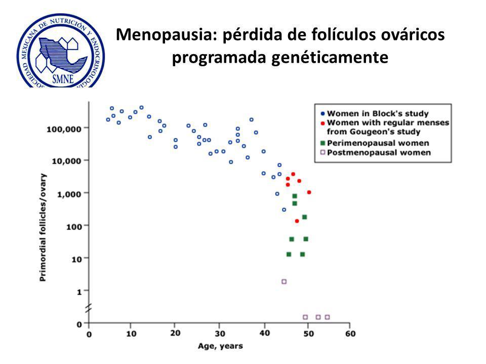 Menopausia: pérdida de folículos ováricos programada genéticamente