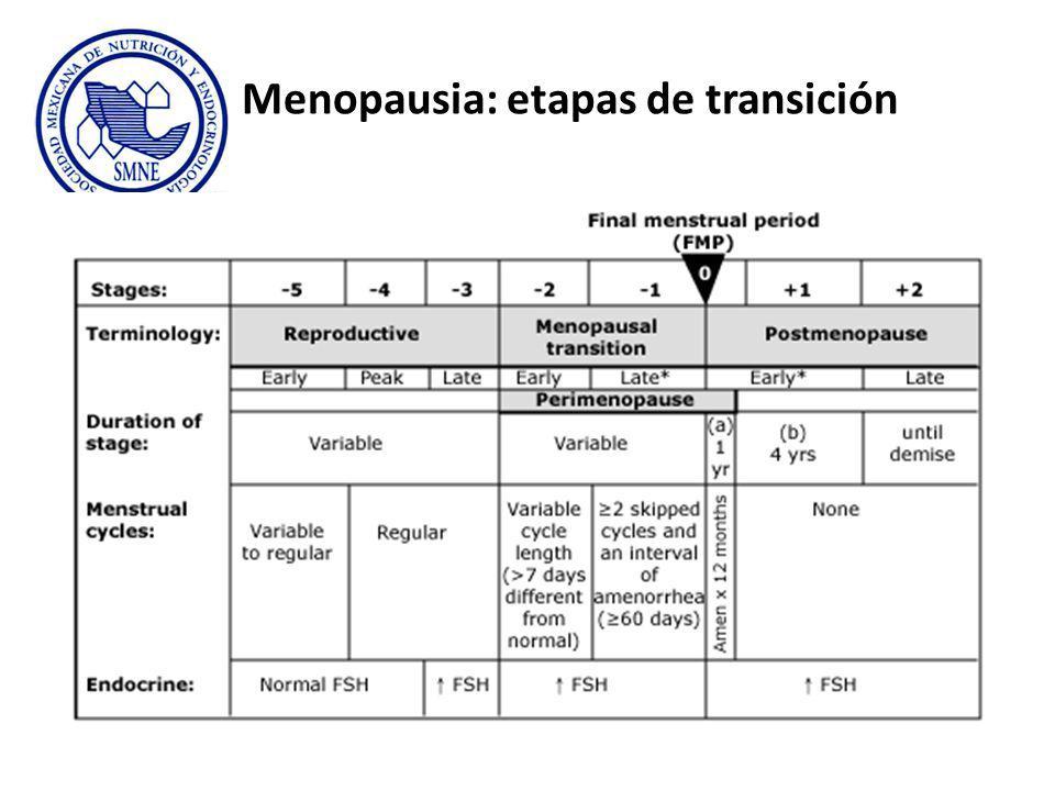 Menopausia: etapas de transición