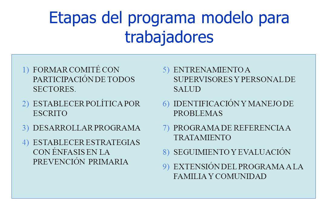 Etapas del programa modelo para trabajadores