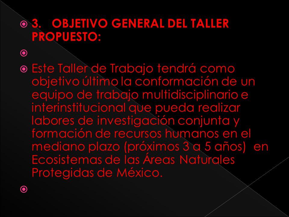 3. OBJETIVO GENERAL DEL TALLER PROPUESTO: