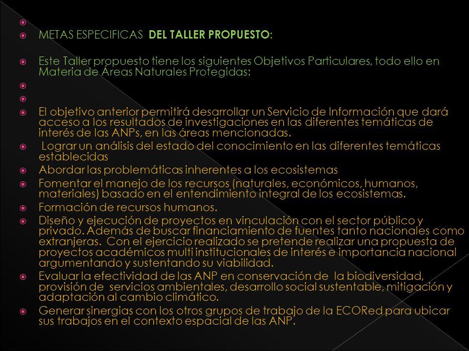 METAS ESPECIFICAS DEL TALLER PROPUESTO: