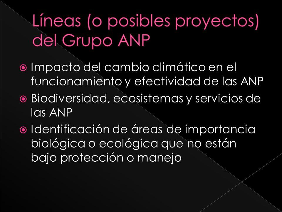 Líneas (o posibles proyectos) del Grupo ANP