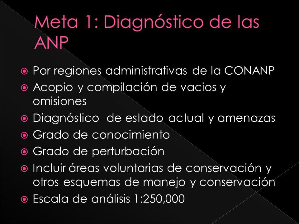 Meta 1: Diagnóstico de las ANP