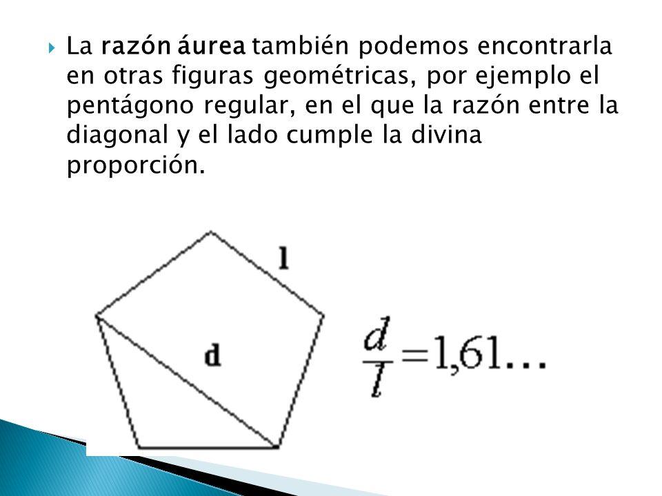 La razón áurea también podemos encontrarla en otras figuras geométricas, por ejemplo el pentágono regular, en el que la razón entre la diagonal y el lado cumple la divina proporción.