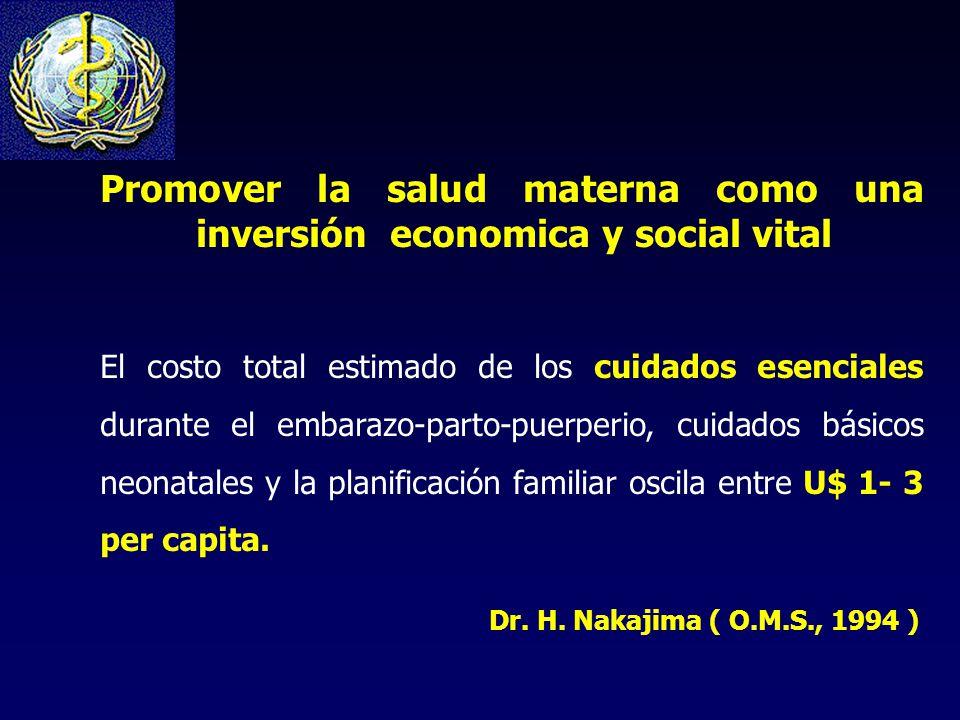 Promover la salud materna como una inversión economica y social vital