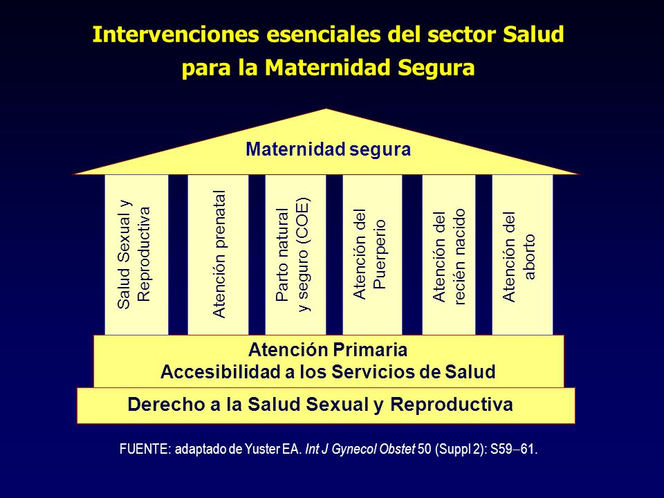 Intervenciones esenciales del sector Salud para la Maternidad Segura