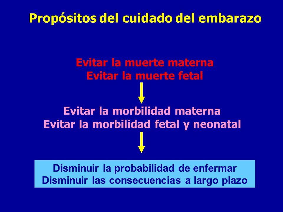 Propósitos del cuidado del embarazo
