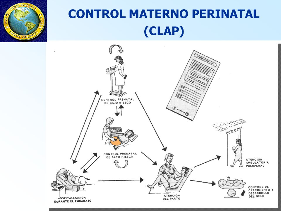 CONTROL MATERNO PERINATAL (CLAP)