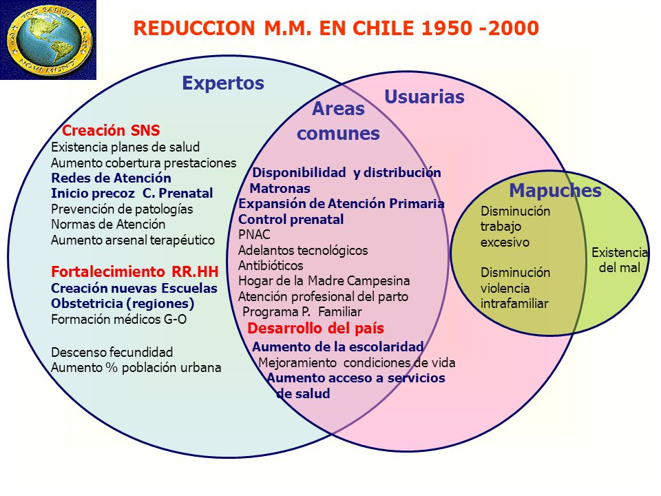 REDUCCION M.M. EN CHILE 1950 -2000 Expertos Usuarias Areas comunes