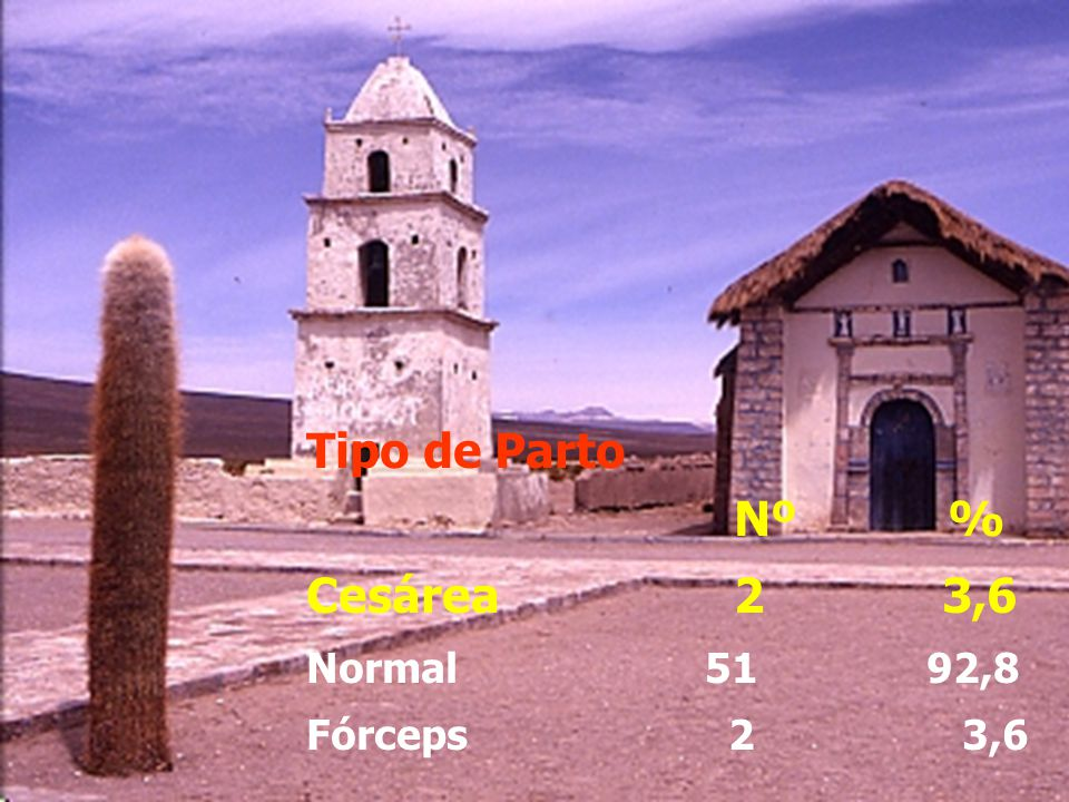 Tipo de Parto Nº % Cesárea 2 3,6.