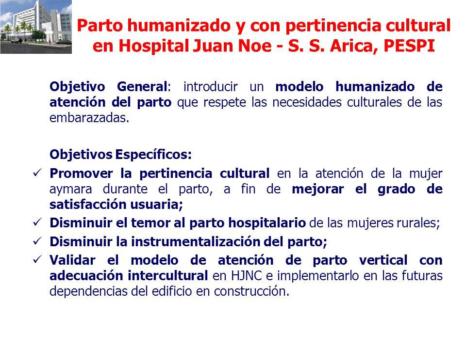 Parto humanizado y con pertinencia cultural en Hospital Juan Noe - S. S. Arica, PESPI