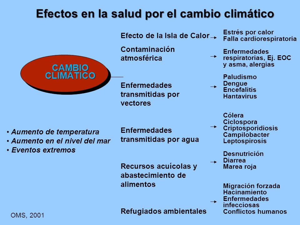 Efectos en la salud por el cambio climático