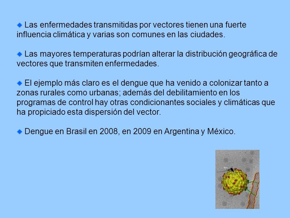 Dengue en Brasil en 2008, en 2009 en Argentina y México.