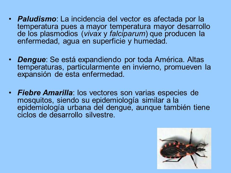 Paludismo: La incidencia del vector es afectada por la temperatura pues a mayor temperatura mayor desarrollo de los plasmodios (vivax y falciparum) que producen la enfermedad, agua en superficie y humedad.