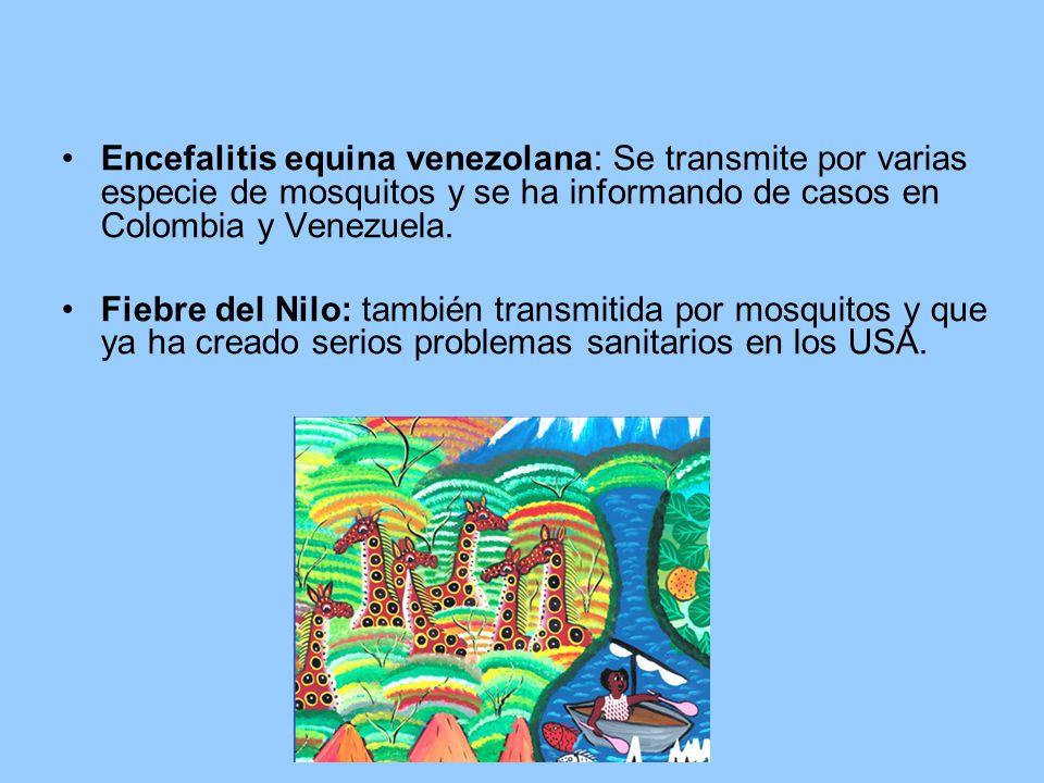 Encefalitis equina venezolana: Se transmite por varias especie de mosquitos y se ha informando de casos en Colombia y Venezuela.