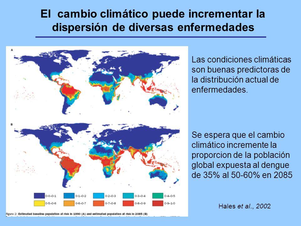El cambio climático puede incrementar la dispersión de diversas enfermedades