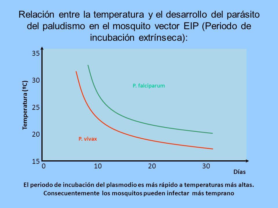 Relación entre la temperatura y el desarrollo del parásito del paludismo en el mosquito vector EIP (Periodo de incubación extrínseca):