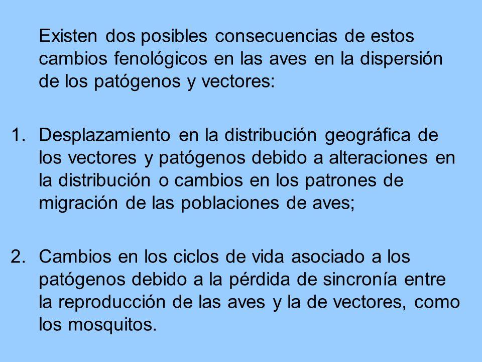 Existen dos posibles consecuencias de estos cambios fenológicos en las aves en la dispersión de los patógenos y vectores: