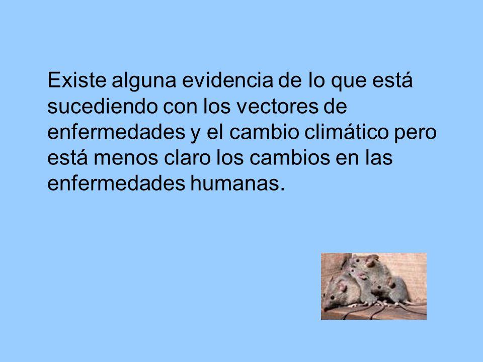 Existe alguna evidencia de lo que está sucediendo con los vectores de enfermedades y el cambio climático pero está menos claro los cambios en las enfermedades humanas.