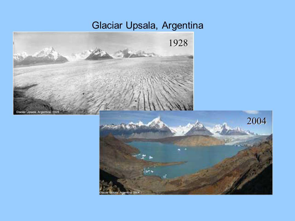Glaciar Upsala, Argentina