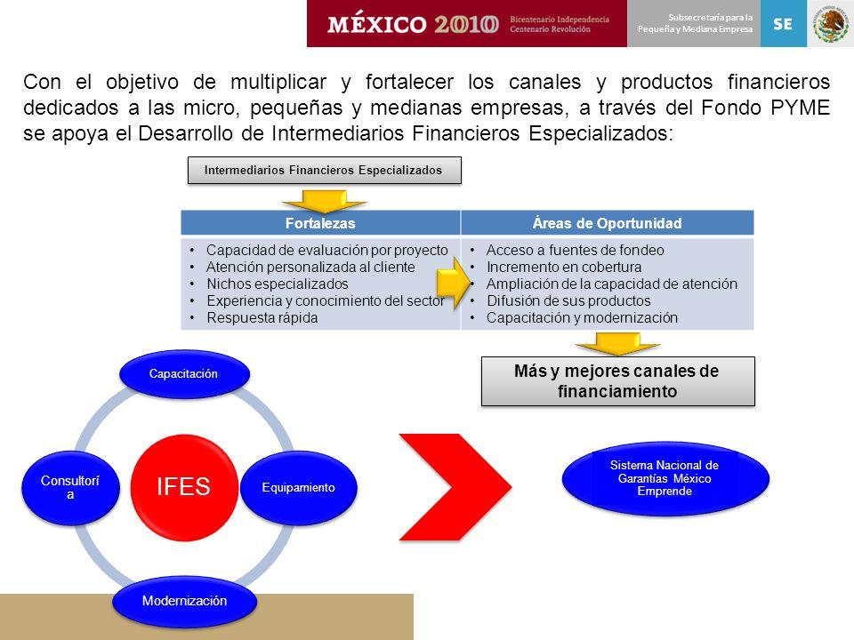 Con el objetivo de multiplicar y fortalecer los canales y productos financieros dedicados a las micro, pequeñas y medianas empresas, a través del Fondo PYME se apoya el Desarrollo de Intermediarios Financieros Especializados: