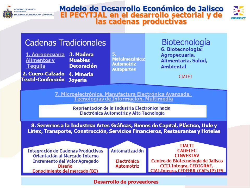 Cadenas Tradicionales Biotecnología