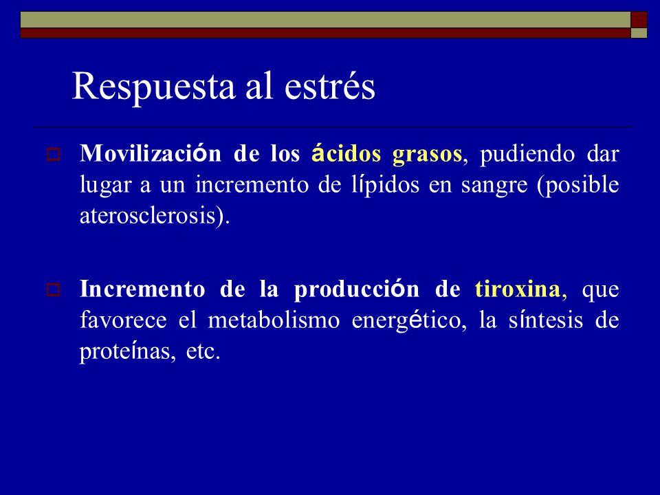 Respuesta al estrés Movilización de los ácidos grasos, pudiendo dar lugar a un incremento de lípidos en sangre (posible aterosclerosis).