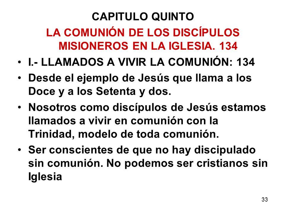 LA COMUNIÓN DE LOS DISCÍPULOS MISIONEROS EN LA IGLESIA. 134